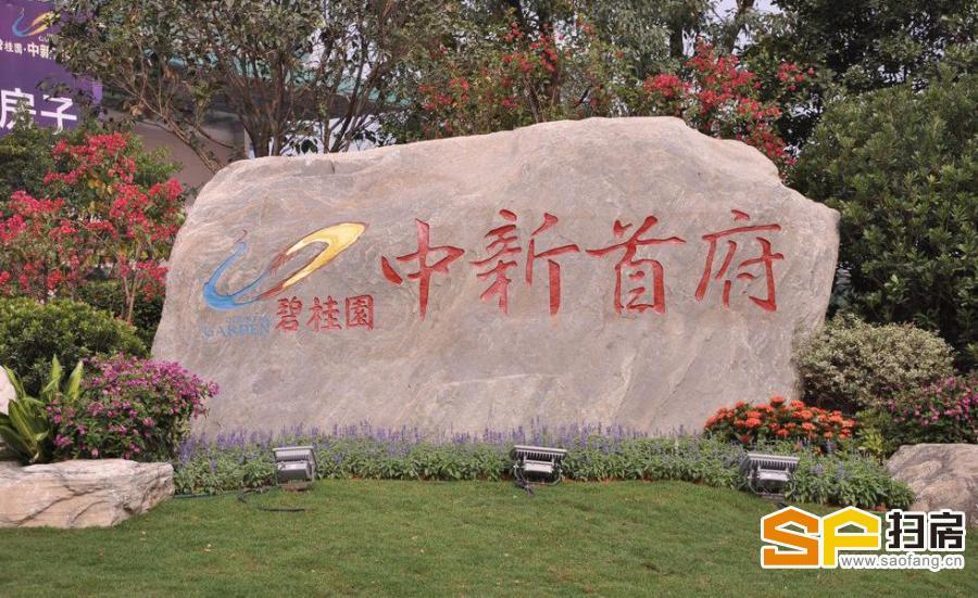 碧桂园中新首府